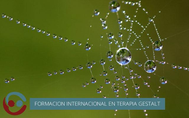 Realización primer módulo Formación Internacional en Terapia Gestalt
